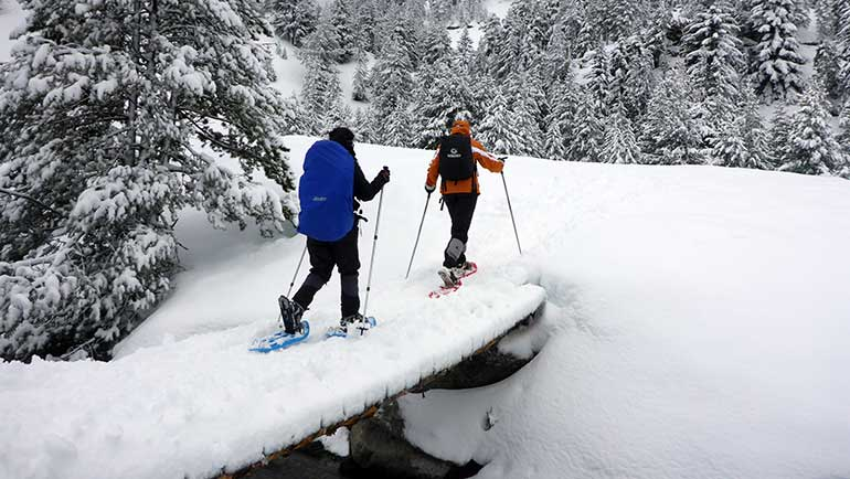 Discover what to do in Benasque in Winter